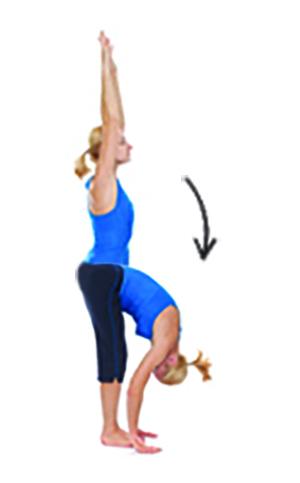 Forward Fold Stretch