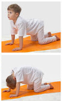 cat cow stretch  back 4 life wellness centre